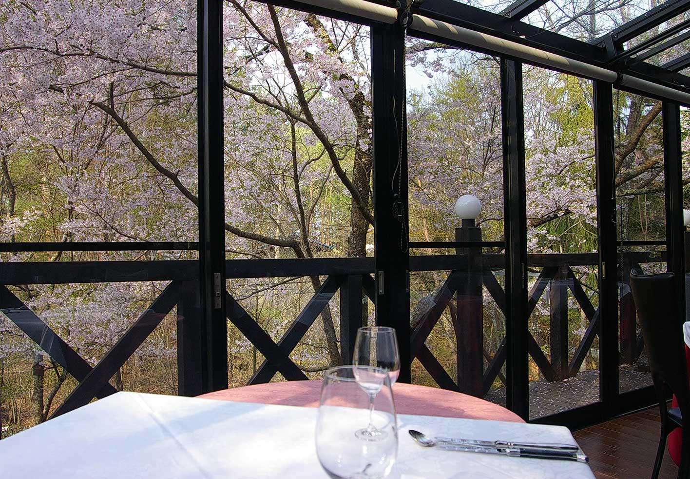 開放感のある窓で蓼科の景色をお楽しみ下さい